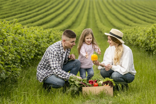 family-at-farmland-with-basket-of-vegetables_23-2148579712.jpg